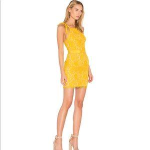 Endless rose mini dress in Honey yellow